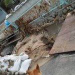 西日本豪雨被害支援のチャリティ始めます!